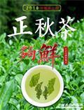 高山新枞浓香铁观音18新秋茶!