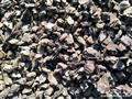 子松4号黑树皮颗粒(干品)