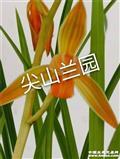 莲瓣新品色花