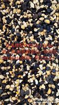 奕品精配中粒植料8-12cm