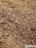 包�]精�Y�l酵一年以上的花生�と�干品2包20斤120升